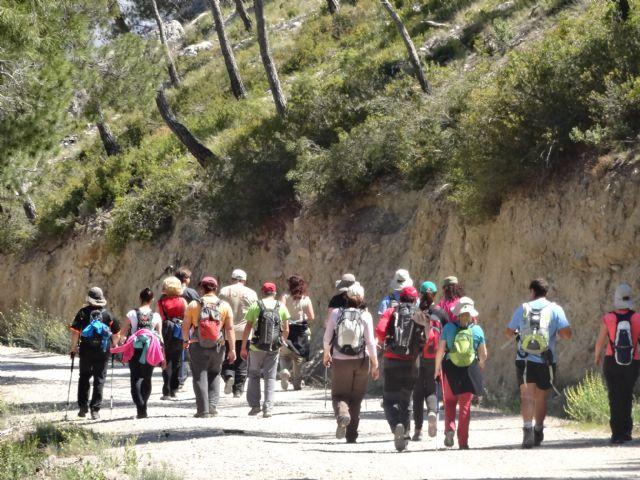 El Club senderista realizó la ruta Los Almeces por los Cuernos, por la Sierra De Ricote, Foto 4