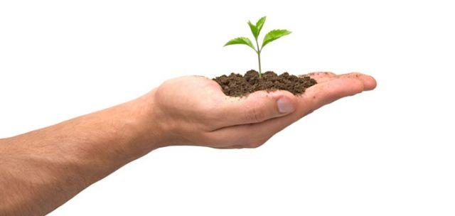 Todavía quedan plazas para el curso de manipulador de productos fitosanitarios que comienza el próximo lunes 10 de junio, Foto 1