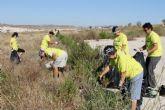 Los participantes de la jornada de limpieza municipal recogen media tonelada de basura
