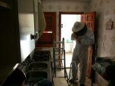 Protección Civil retira un enjambre en la cocina de una vivienda de la avenida Juan Carlos I
