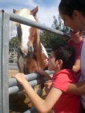 PADISITO visita un centro de terapias ecuestres en Alhama de Murcia - 7