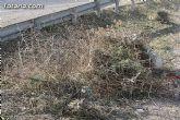El ayuntamiento lleva a cabo un plan de choque de limpieza de caminos - 2