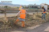 El ayuntamiento lleva a cabo un plan de choque de limpieza de caminos - 5