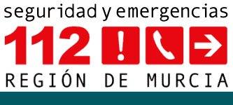 El 1-1-2 ha recibido desde ayer tarde 139 llamadas relacionadas con el viento en la Región de Murcia, Foto 1