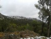 Caen las primeras nieves del 2014 en Sierra Espuña - Foto 2