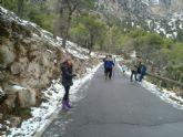 Caen las primeras nieves del 2014 en Sierra Espuña - Foto 5