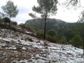 Caen las primeras nieves del 2014 en Sierra Espuña - Foto 10