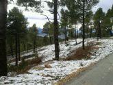 Caen las primeras nieves del 2014 en Sierra Espuña - Foto 11