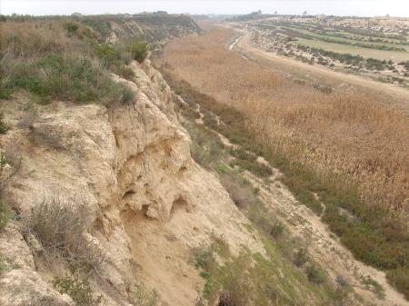 La concejalía de Medio Ambiente solicita a la Confederación Hidrográfica del Segura la recuperación ambiental integral del río Guadalentín, Foto 1