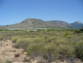 La Asociación de Propietarios de la ZEPA del Llano de las Cabras solicita su desclasificación por haber desaparecido la alondra de Dupont