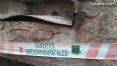 COAG y APESE se oponen a la desaparición de las barbacoas en La Santa y Sierra Espuña - 9