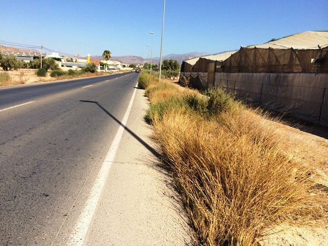 Denuncian que la carretera comarcal Totana-Mazarrón es una vía secundaria de las más peligrosas, Foto 1