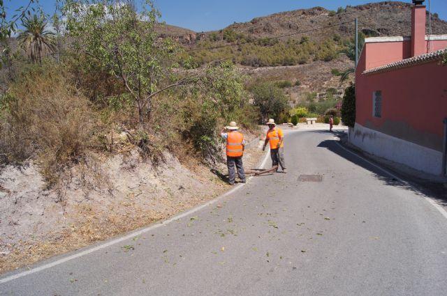 La Dirección General de Carreteras procede a la limpieza de cunetas y desbroce de obstáculos que invaden la carretera de La Huerta, Foto 1