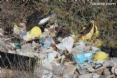 Las escombreras ilegales son un ejemplo más de la desidia del Partido Popular de Totana - 16