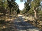 Medio Ambiente mejorar� la red viaria de acceso al �rea recreativa de la Cresta del Gallo, en el Parque Regional El Valle