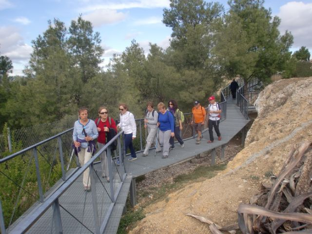 The Sports Council organized a day of hiking in the canyon of the Rio Argos Calasparra - 4