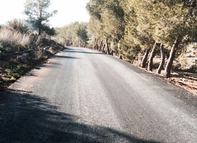 Finalizan las obras del camino rural Los Cordones, Foto 4