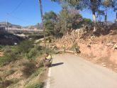 Protección Civil y la Brigada Forestal limpian el arbolado que ocupaba la vía en el Camino de los Mortolitos