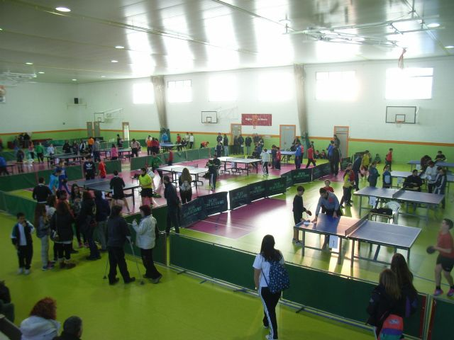 The IES Juan de la Cierva regional champion male child is proclaimed in the regional final table tennis School Sports, - 8