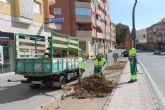 Las obras en la Avenida Doctor Meca mejoran el acceso a Puerto de Mazarrón