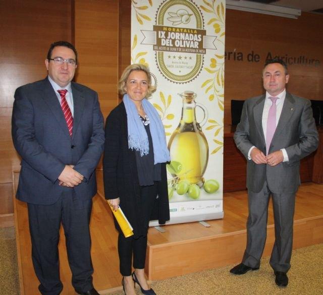 Martínez-Cachá destaca la mejora en la calidad del aceite de oliva con la combinación de variedades tradicionales con otras nuevas, Foto 1