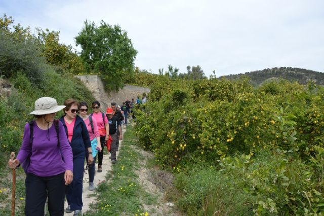 More than 40 walkers enjoy Hiking path that took place between Ricote and Ojós - 2