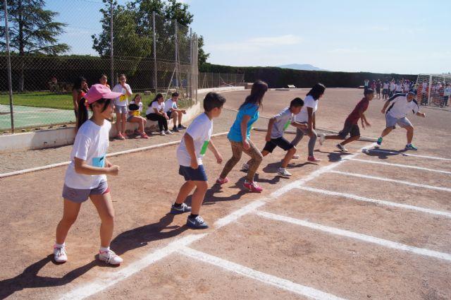 Más de 400 alumnos de sexto curso de Educación Primaria de todos los centros educativos participan en la Olimpiada Escolar