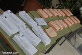 Participaci�n 18 horas - Un 50,72 % de los electores de la Regi�n de Murcia ha ejercido su derecho al voto en las elecciones locales