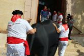 La Peña de Carnaval Gertrudis celebra este sábado, día 4 de julio, los Sanfarmines totaneros con la actividad Que nos pilla el toro!!!! - 7