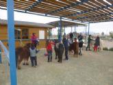Continúa abierto el plazo de inscripción para la el Taller con Ponis y Caballos