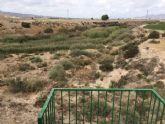 El alcalde advierte del peligro que existe de inundación en el núcleo rural de Las Ventas y el Camino Real por una embocadura abierta en el Canal de El Paretón si la CHS no toma medidas - 8