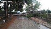 Bomberos intervienen para retirar una rama de un árbol de grandes dimensiones, que estaba cortando una carretera