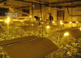 La Guardia Civil desmantela una plantaci�n indoor con medio millar de plantas de marihuana