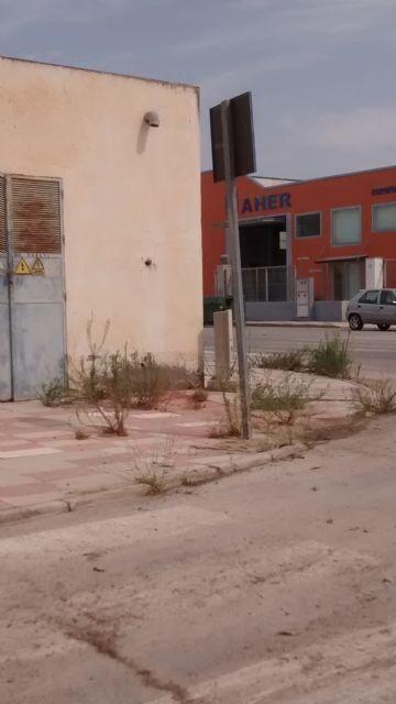 El PP denuncia el estado de abandono de los jardines y falta de limpieza general que sufre el Polígono Industrial de Totana, Foto 6