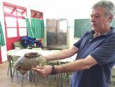 Alumnos del curso de arqueolog�a subacu�tica rescatan m�s de 60 piezas de �poca fenicia y romana