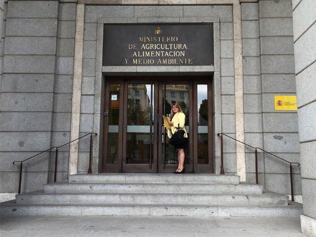 Reunión en el Ministerio de Medio Ambiente para impulsar una mejora de los paseos marítimos de Mazarrón, Foto 1