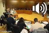 Pleno ordinario noviembre 2015 - Moción sobre proyecto de Línea de Alta Tensión Lorca Solar PV