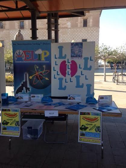 AELIP está presente hoy en las II jornadas universitarias de voluntariado UCAM, Foto 1