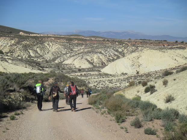 La Concejalía de Deportes cerró el año 2015 con una jornada de senderismo por la diputación de El Raiguero Bajo, Foto 2