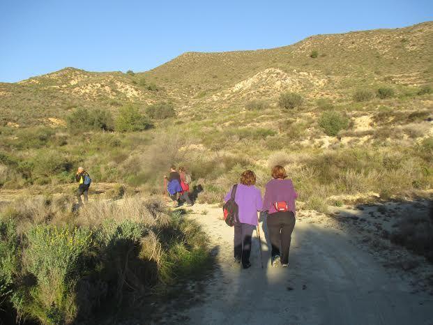 La Concejalía de Deportes cerró el año 2015 con una jornada de senderismo por la diputación de El Raiguero Bajo, Foto 3