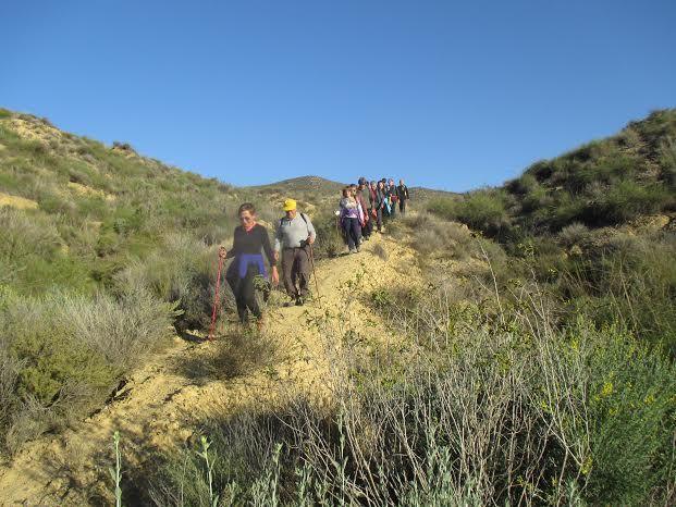 La Concejalía de Deportes cerró el año 2015 con una jornada de senderismo por la diputación de El Raiguero Bajo, Foto 8