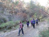 La Concejalía de Deportes cerró el año 2015 con una jornada de senderismo por la diputación de El Raiguero Bajo