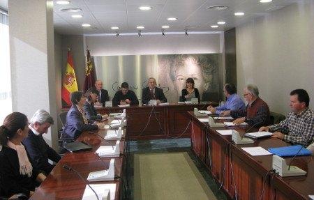 La Plataforma de Afectados por la Linea de Alta Tensión se reúne con la Presidenta y con los Portavoces de la Asamblea Regional, Foto 2