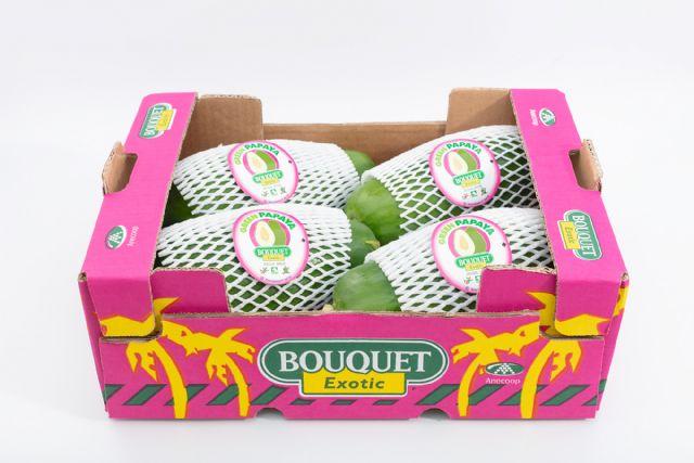 Anecoop impulsa la comercialización de papaya verde, la papaya que se consume como una hortaliza - 2, Foto 2