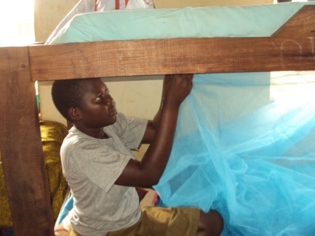 25 de abril, Día Mundial de la Malaria - 1, Foto 1