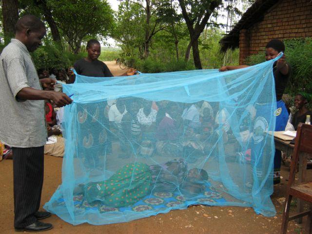25 de abril, Día Mundial de la Malaria - 2, Foto 2