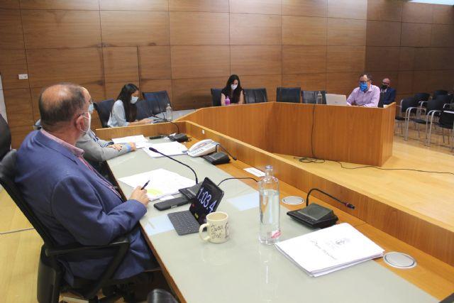 El Pleno aprueba la modificación presupuestaria de crédito extraordinario para habilitar la línea de ayudas a las empresas y colectivos económicos para combatir la crisis del COVID-19, Foto 4