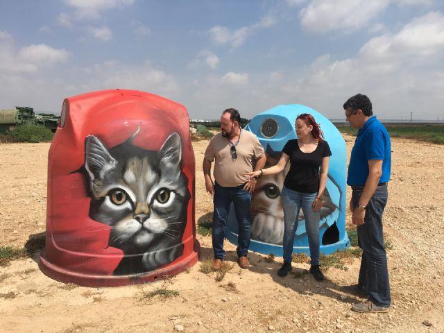 San Javier se convierte en uno de los primeros municipios de la Región en poner en marcha las colonias felinas - 1, Foto 1