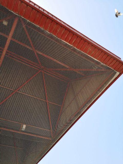 Obras de mejora en las instalaciones del polideportivo municipal de Alcantarilla - 5, Foto 5