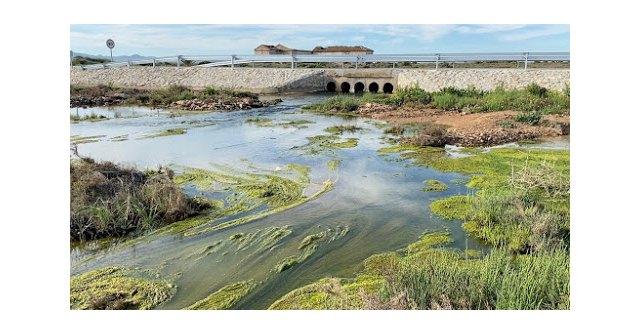 Foto Pacto por el Mar Menor. Entrada de aguas contaminadas en el Mar Menor procedente del acuífero. Febrero 2020, Foto 1